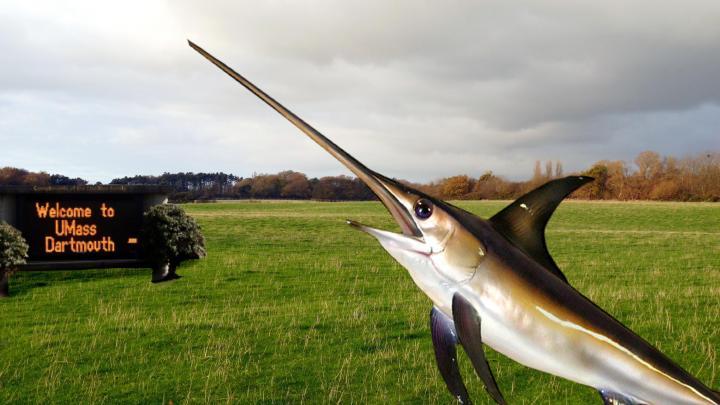 swordfishcampus-page-001.jpg